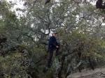 Climb-it Change